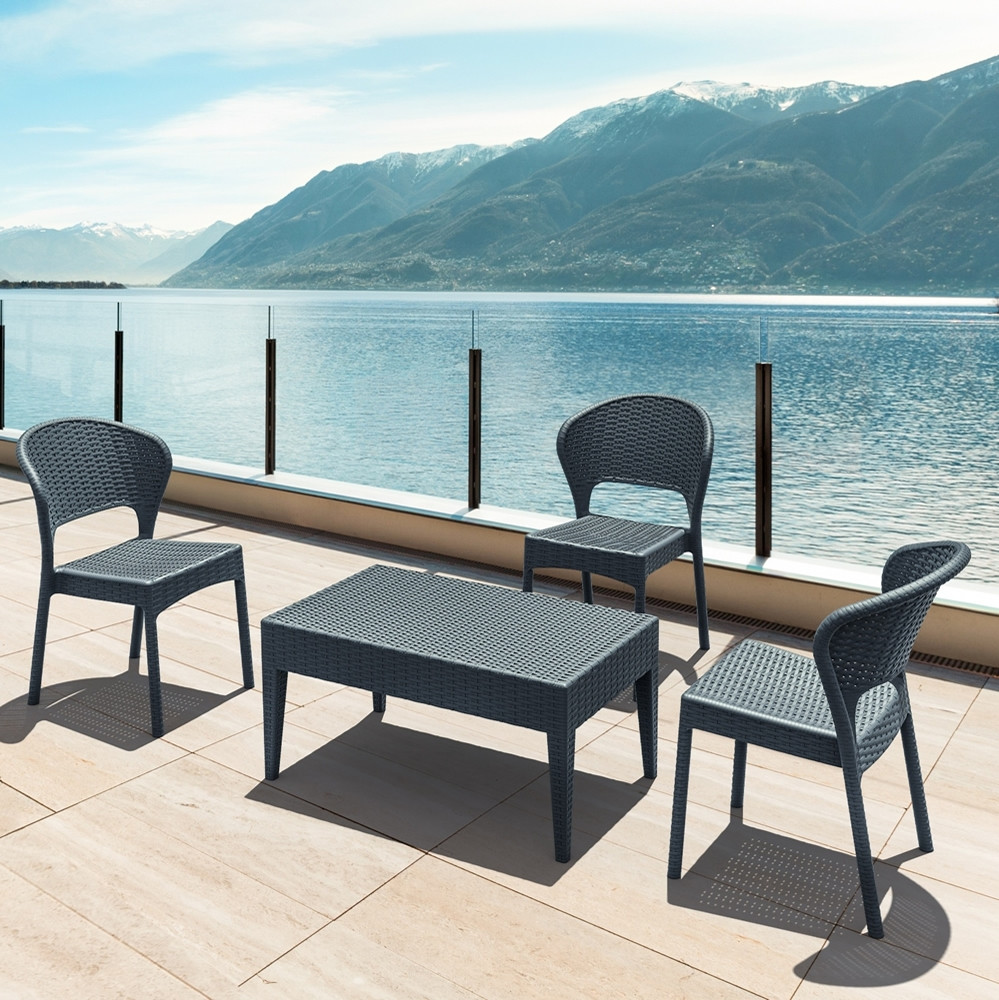 Compamia Daytona Wicker Dining Chair Pair - Wicker Dining Chairs ...